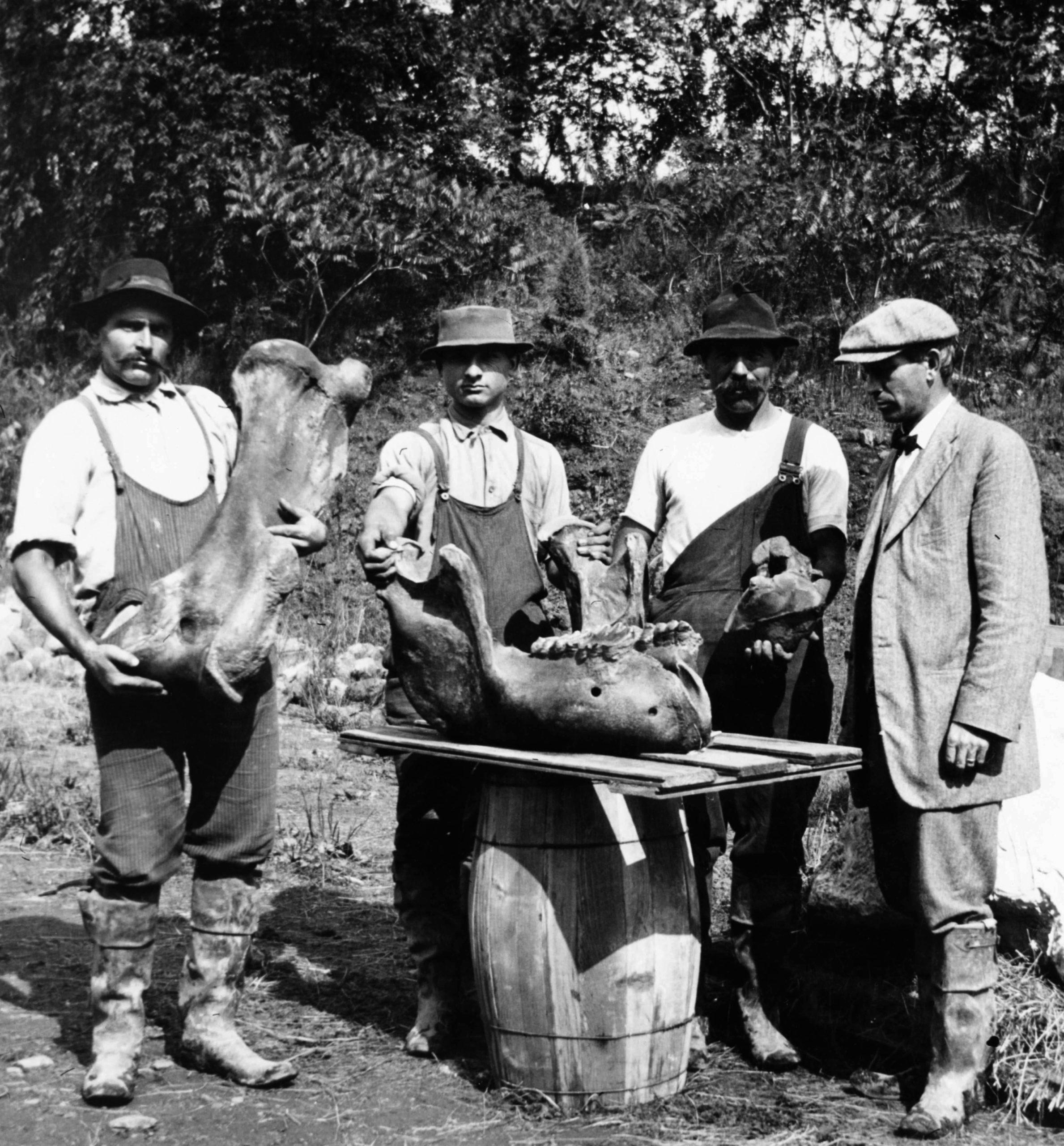 Hill-Stead workers and overseer Allen Cook, ca. 1913